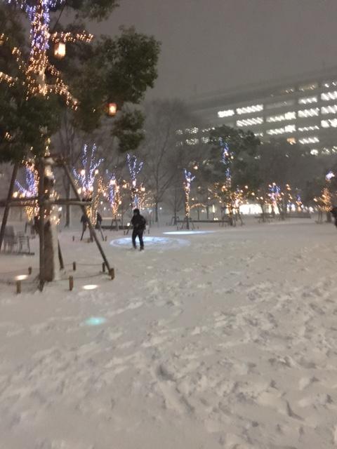 熊本市-内臓調整-整体